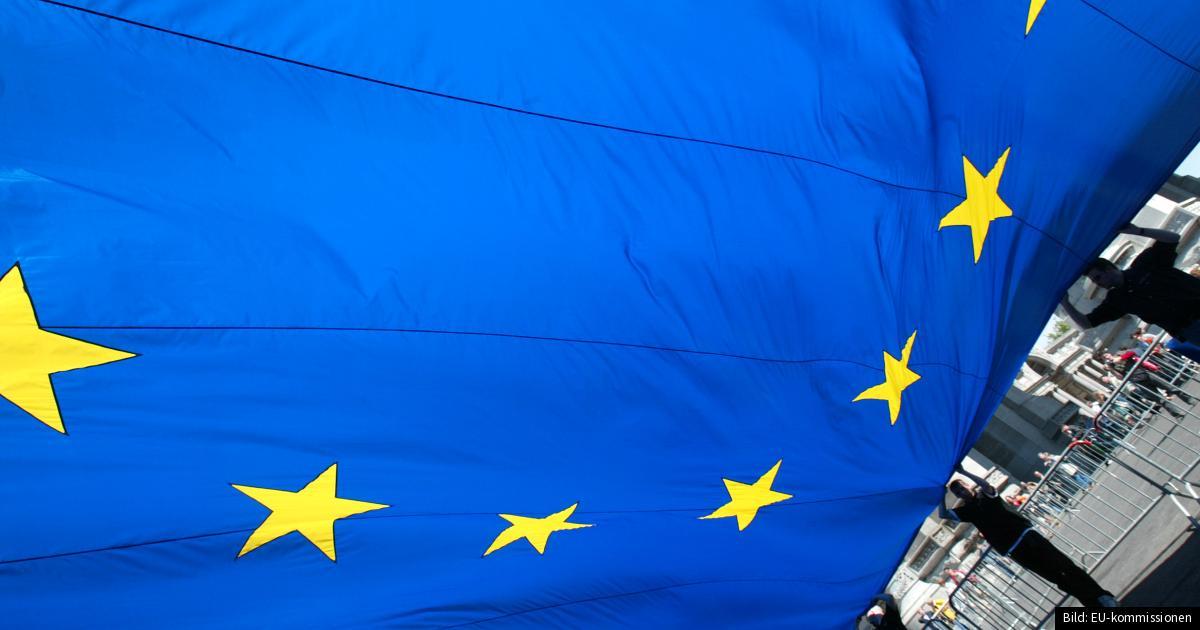 när röstade sverige om euro